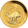 Picture of 2019 1 oz Australian Gold Kangaroo Coin